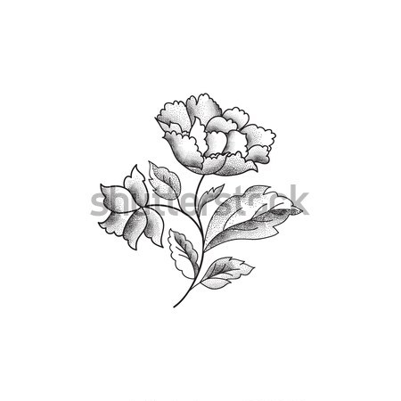 Flower bouquet. Floral sketch engraving background Stock photo © Terriana
