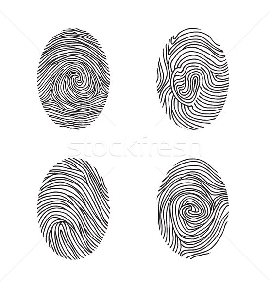 Fingerprint set. Abstract lswirl line decor elements with finger Stock photo © Terriana