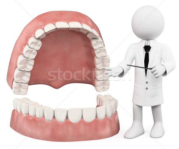 3D white people. Professor showing a denture Stock photo © texelart