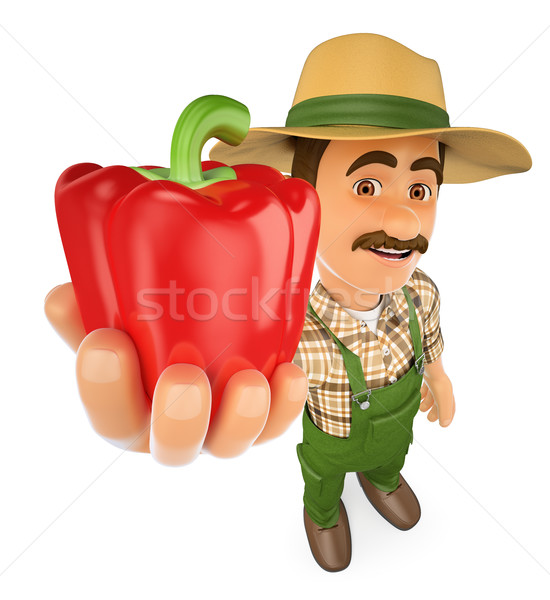 3D agricultor rojo pimienta cosecha de trabajo Foto stock © texelart
