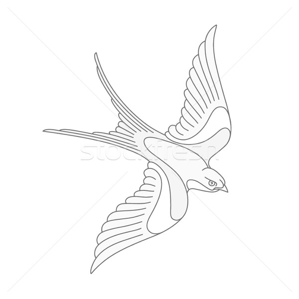 Flying swallow or swift tattoo design. Stock photo © TheModernCanvas