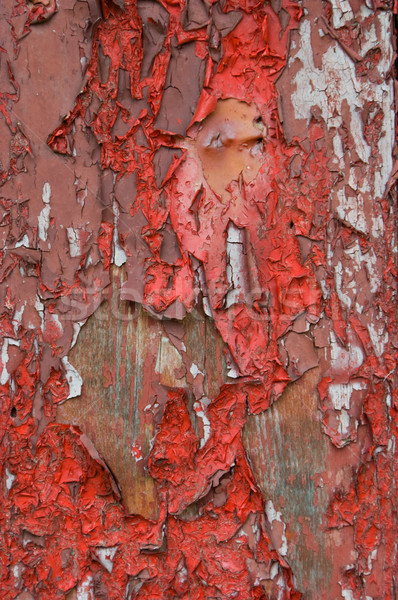Peeling Paint Background Stock photo © Theohrm