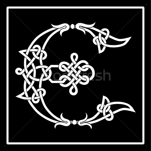 Celtic Knot-Work E Stock photo © Theohrm