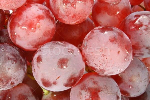 Rood druif shot seizoen- druiven bladeren Stockfoto © TheProphet