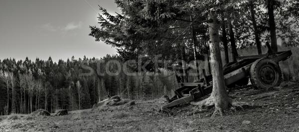 антикварная фермы оборудование дерево природы области Сток-фото © thisboy