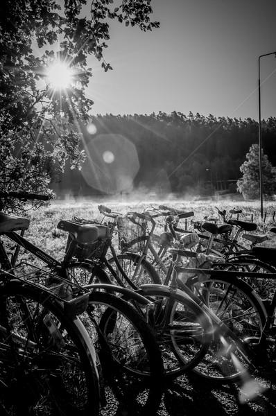 Bicicletas amanecer muchos hasta lado carretera Foto stock © thisboy