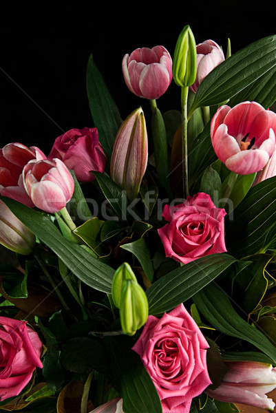 Flores hojas verdes tulipanes rosas flor Foto stock © thisboy