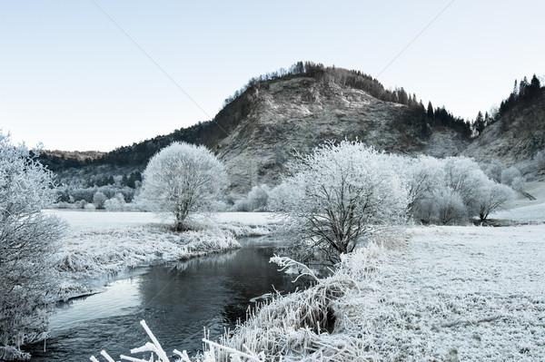 Rzeki zimno norweski krajobraz niebo wody Zdjęcia stock © thomland