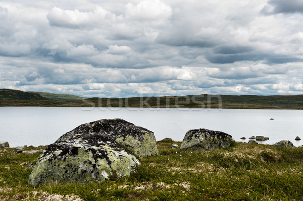 農村 自然 山 オスロ 草 ストックフォト © thomland