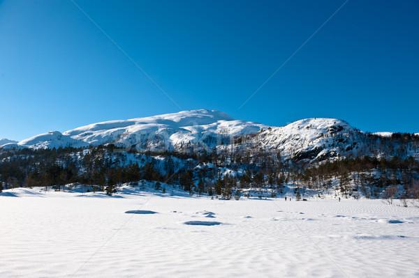 ノルウェーの 風景 美しい 30 ツリー ストックフォト © thomland