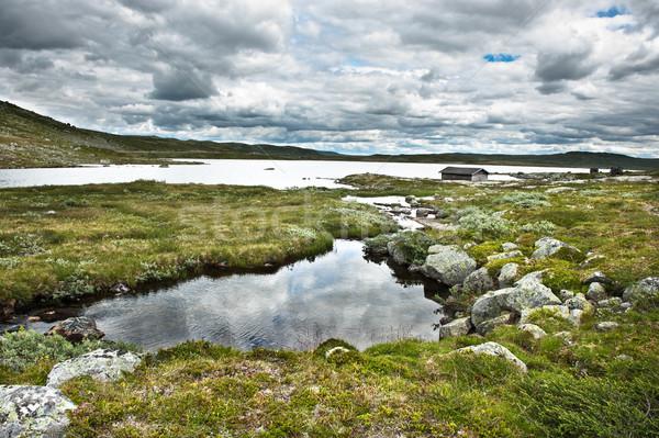 ノルウェーの 山 表示 オスロ 市 ストックフォト © thomland