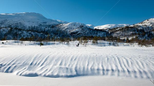 Norvég tájkép gyönyörű 30 jegyzőkönyv fa Stock fotó © thomland