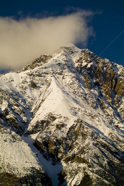 Glacial Mountains Stock photo © THP