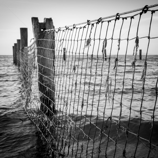 Seaside Nets Black and White Stock photo © THP