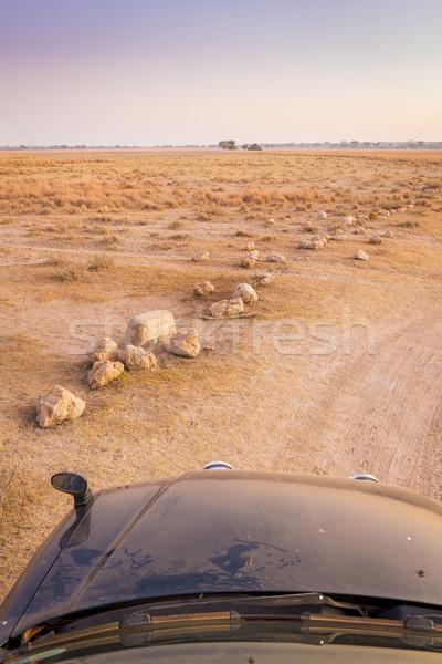 дисков Safari Африка Восход пейзаж живописный Сток-фото © THP