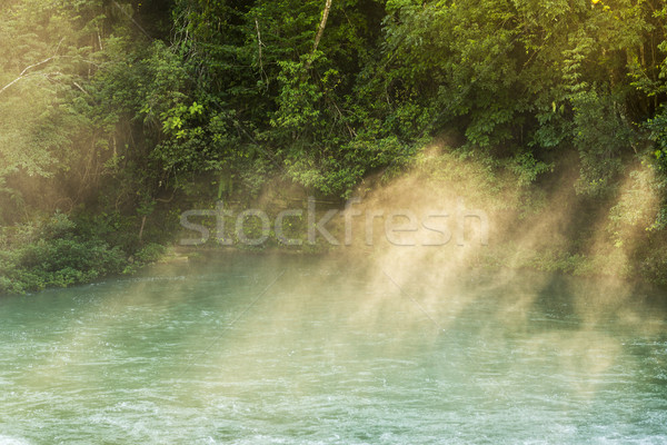Rio Blanco National Park Belize Stock photo © THP