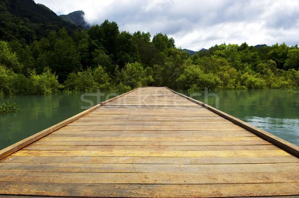 бесконечный лес азиатских совета Сток-фото © THP