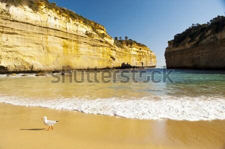 Ocean drogowego Australia dwanaście morza Zdjęcia stock © THP