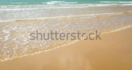 Beach Shoreline Background Stock photo © THP