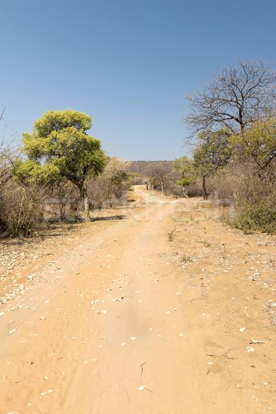 Botsvana çöl yol sıcak güneş kırsal Stok fotoğraf © THP
