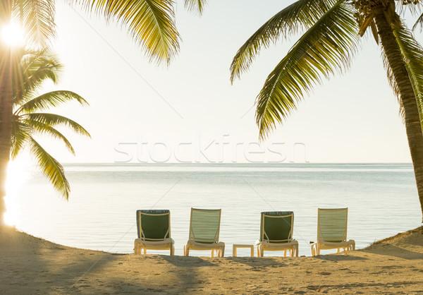 Beach Holiday Deckchairs Stock photo © THP