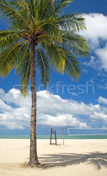 пальма пляж тропический пляж чистой песок волейбол Сток-фото © THP