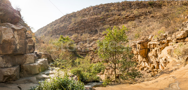 Botswana głęboko wiejski Afryki drzew Afryki Zdjęcia stock © THP