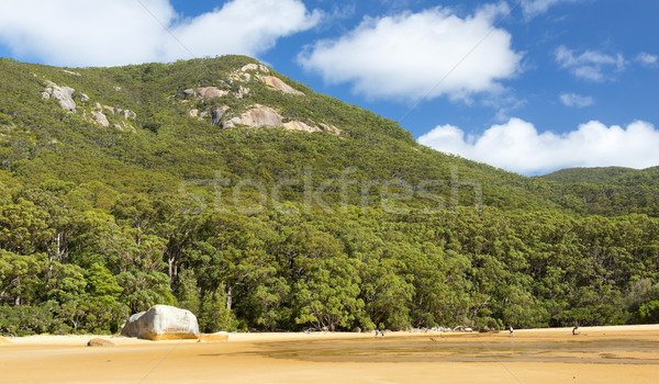 Stock photo: Sealers Cove Australia