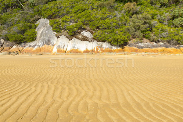 Seashore Landscape Background Stock photo © THP