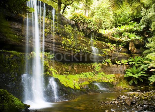 Tazmanya sıçrama aşağı alan park Stok fotoğraf © THP