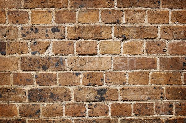 Brick Wall Stock photo © THP