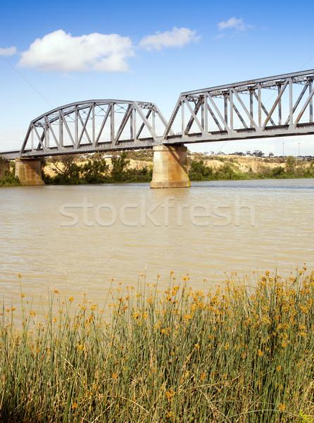 Ponte rio Austrália cidade sul da austrália natureza Foto stock © THP