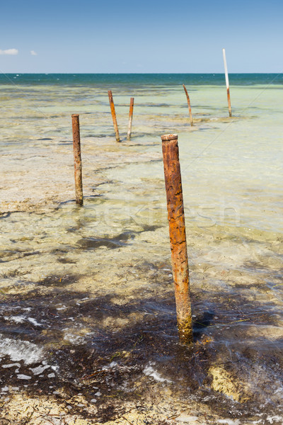 Ocean Poles Stock photo © THP