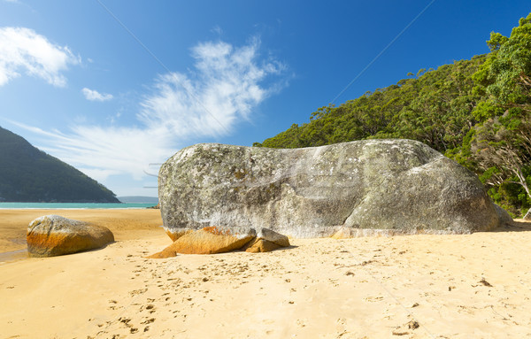 Ganite Boulder On Sealers Cove Stock photo © THP