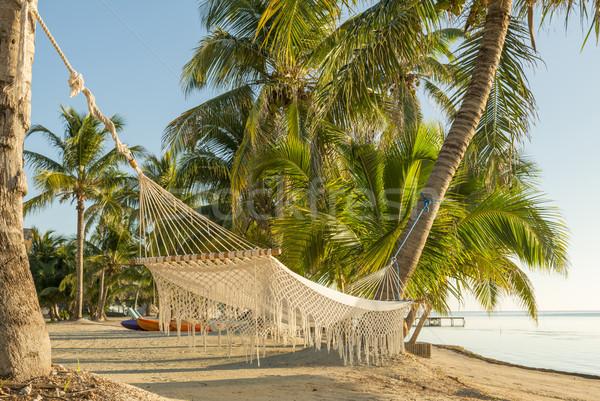 リゾート 休暇 ハンモック 熱帯ビーチ ビーチ ツリー ストックフォト © THP