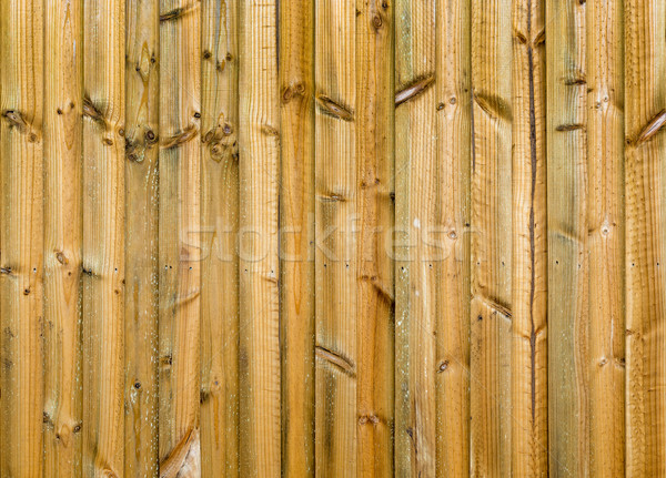 New Wood Fence Stock photo © THP