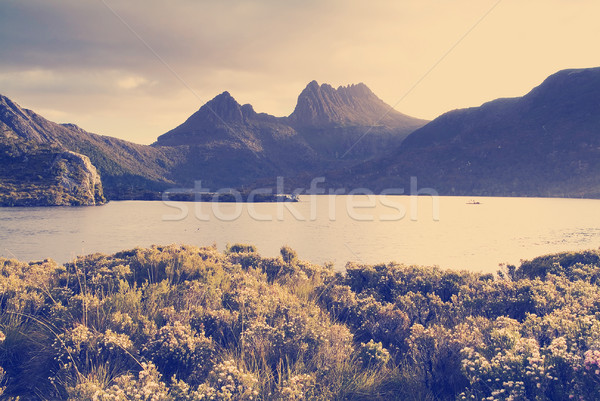 Cradle Mountain, Tasmania Stock photo © THP