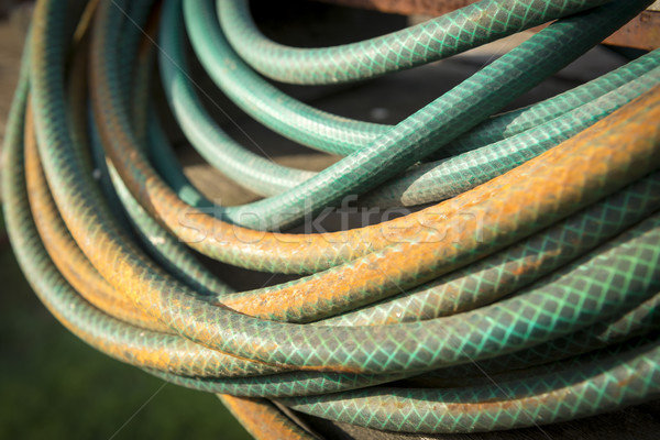 Garden Hose Stock photo © THP