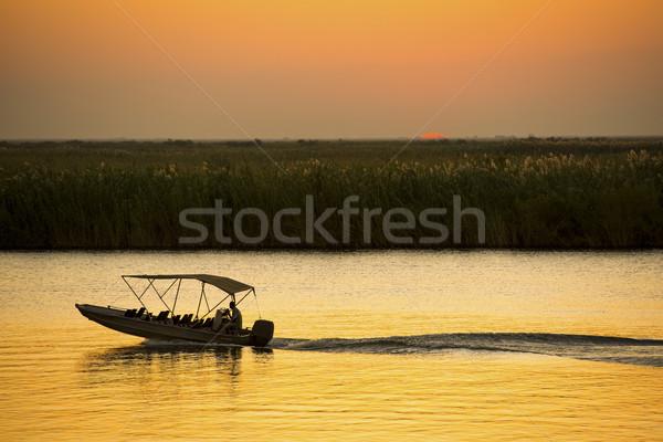 Nehir safari tekne Botsvana Afrika gün batımı Stok fotoğraf © THP