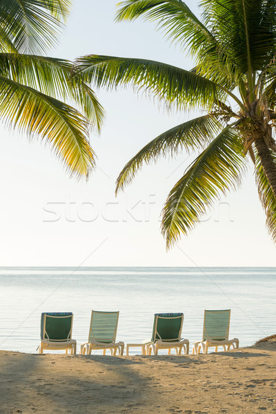 Stock photo: Tropical Island Deckchairs