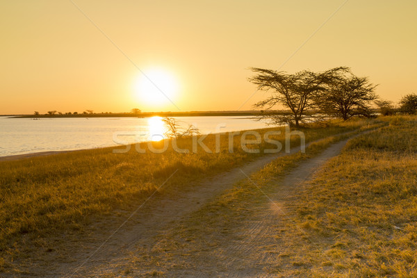 Africa Road Sunset Stock photo © THP