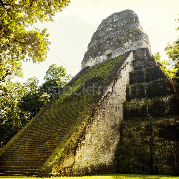 Templo Guatemala famoso parque natureza viajar Foto stock © THP