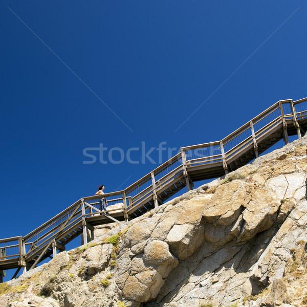 Kadın tırmanma merdiven genç kadın yukarı dik Stok fotoğraf © THP