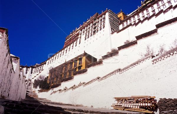 Saray tibet ev dağ mimari Asya Stok fotoğraf © THP