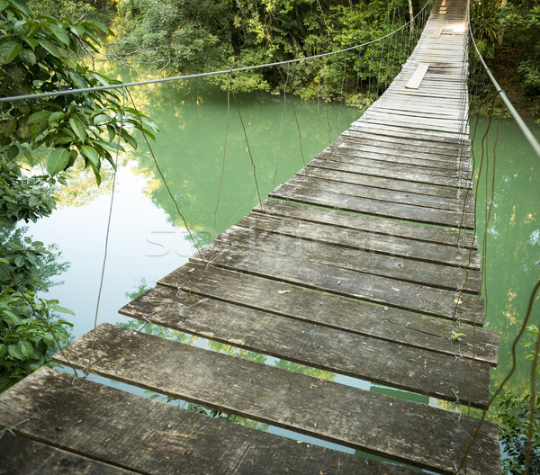 Bridge In Rio Blanco National Park Belize Stock photo © THP