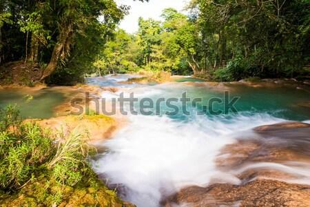 Rainforest şelaleler su çağlayan nehir orman Stok fotoğraf © THP