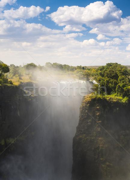 Szürkehályog Afrika Zambia Zimbabwe egy hét Stock fotó © THP