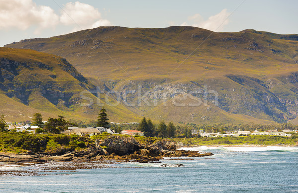 Hermanus Bayside in South Africa Stock photo © THP