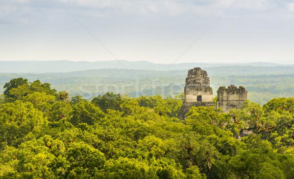 Tikal National Park Guatemala Stock photo © THP