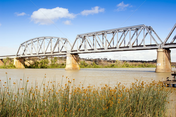 моста реке Австралия города Южная Австралия пейзаж Сток-фото © THP